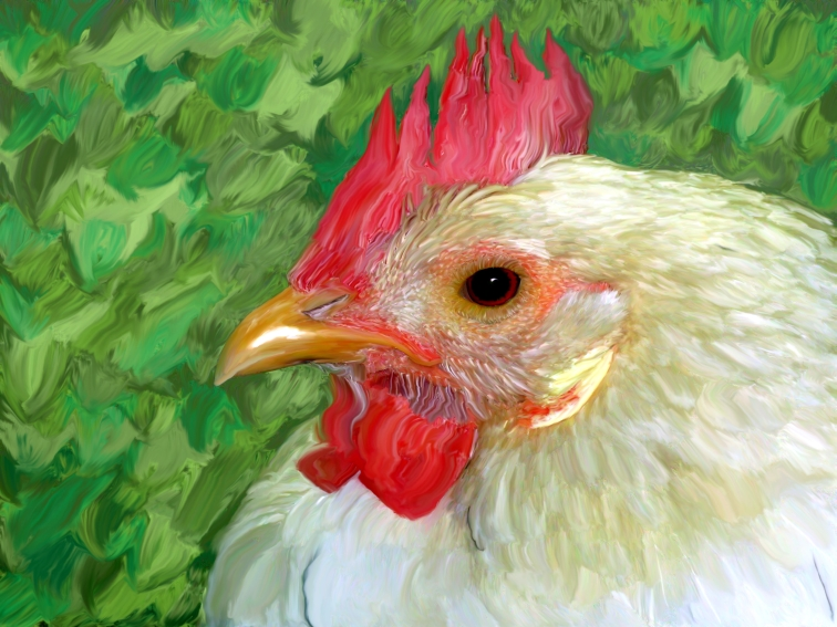 Comb Chicken Wiki Fandom Powered By Wikia