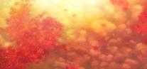 Chihayafuru-soshite-ima-ending-1 (11)