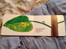 The Very Hungry Caterpillar (10)
