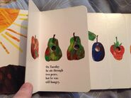 The Very Hungry Caterpillar (5)