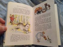 The Tale of Kimmy-Cat and The Frightened Teddy Bear (5)