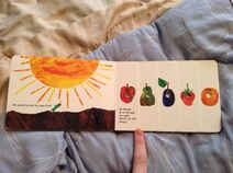 The Very Hungry Caterpillar (4)