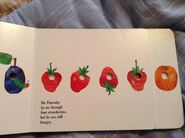 The Very Hungry Caterpillar (7)