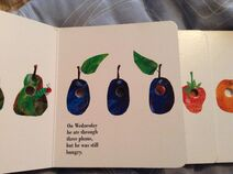 The Very Hungry Caterpillar (6)
