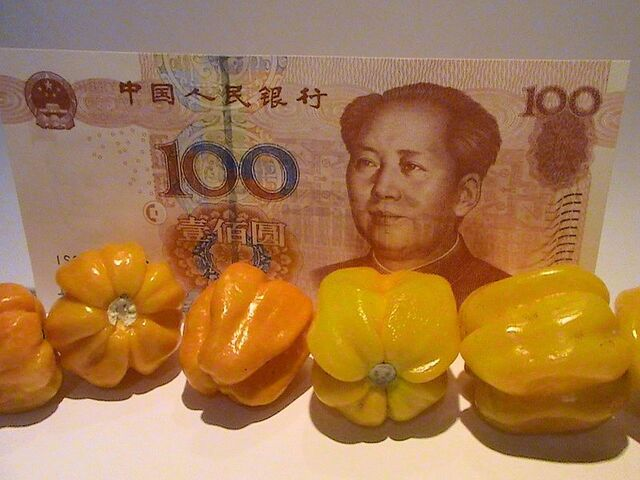 File:Capsicum chinense - Hainan Yellow Lantern Chili - 02.jpg