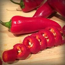 Fresno-Pepper
