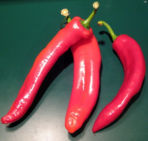 File:Italian sweet peppers.jpg
