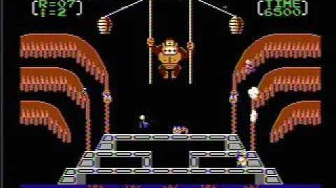 Donkey Kong 3 - NES Gameplay