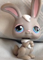 Bunnyshy Thorley