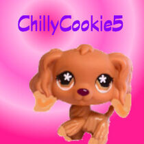 ChillyCookie5