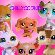 ChillyCookie5Logo1