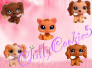 ChillyCookie5Logo2