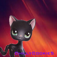 ChillyCookie5Logo4