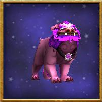 淡紫色狂暴犬
