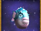 S-霜冻鱼(宠物)