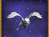 B-白色猫头鹰(宠物)