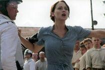 Katniss Voulenteers