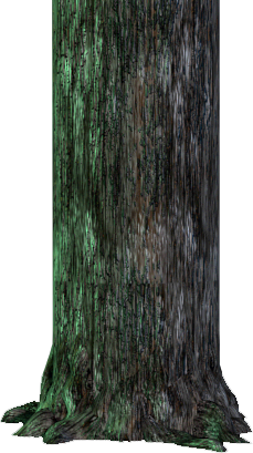 File:OldTree.png