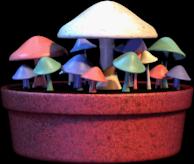 File:FungusFarm.png