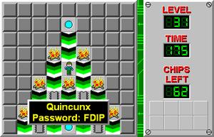 CCLP1 Level 31
