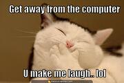 Laughing-cat