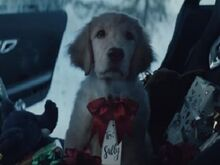 Mercedes Santa Puppy Commercial