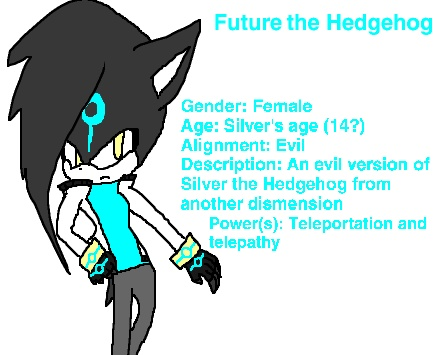 File:Future the Hedgehog.jpg