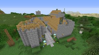 NPC Village 3