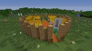NPC Village 1