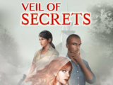 Veil of Secrets Theory Page