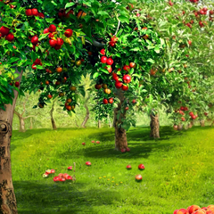 Grovershire Apple Orchard