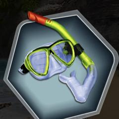 Snorkel Gear as seen in Ch. 10