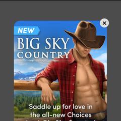 In-App announcement