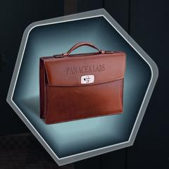 Declan's briefcase containing <i>V-3706</i>