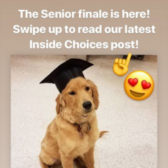 The Senior swan song announcement on IG