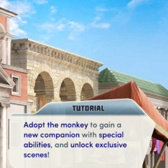 Adopting the monkey tutorial