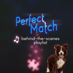 Perfect Match BTS playlist cover ft. Dipper