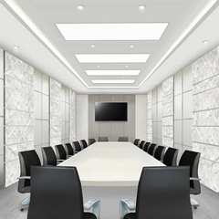 Raines Corp conference room