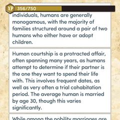 Human Romantic Customs