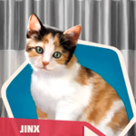 WTCh03 Jinx the Cat