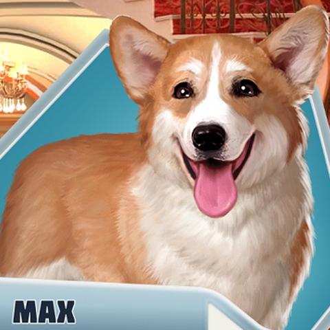 Behold! Max the corgi, the Ducal Minister of Cassandrastan