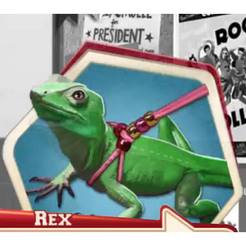 Luis' Lizard <i>Rex</i>