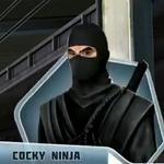 LHBk2Ch16 Ninja