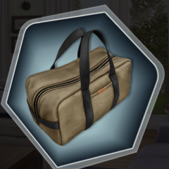 Samson's Luggage Bag in Chapter 6