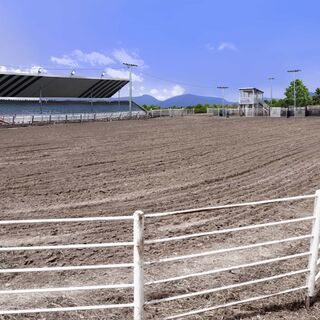 Rodeo stands