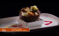 Wayne's Stuffed Urchin