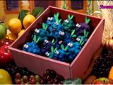 Sell-itself Berries