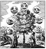 File:Tree of life 2.jpg