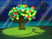Sandy has lit up her tree