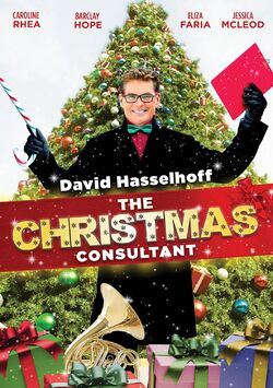 The Christmas Consultant DVD